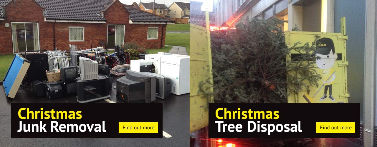 Christmas Tree & Junk Removal